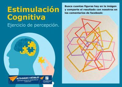 Estimulación Cognitiva-percepcion-13