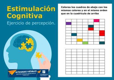 Estimulación Cognitiva-percepcion-14