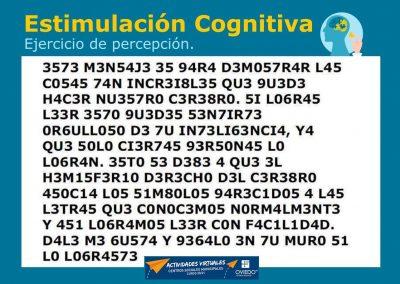 Estimulación Cognitiva-percepcion-18