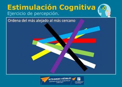 Estimulación Cognitiva-percepcion-19