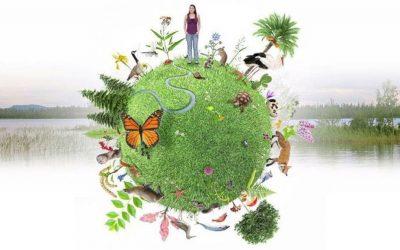 Sin Biodiversidad nos quedamos sin sidra